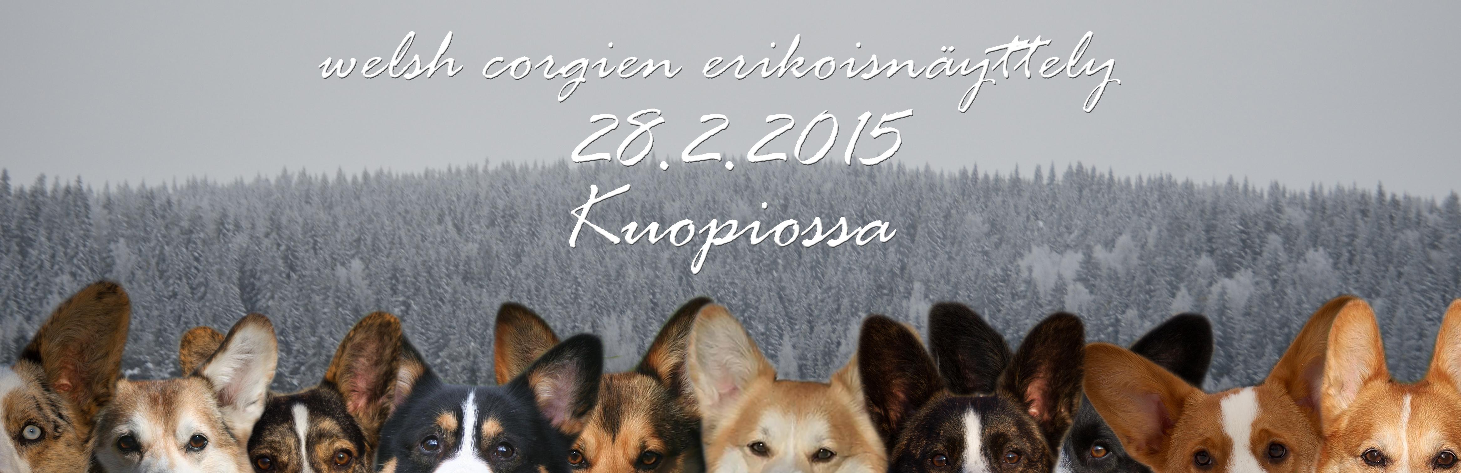 kuopio_erkkalogo_tekstilla