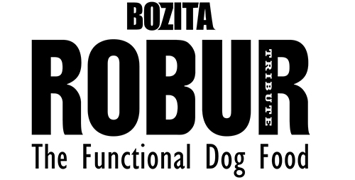 2009 bozita_robur_logo_black_hires