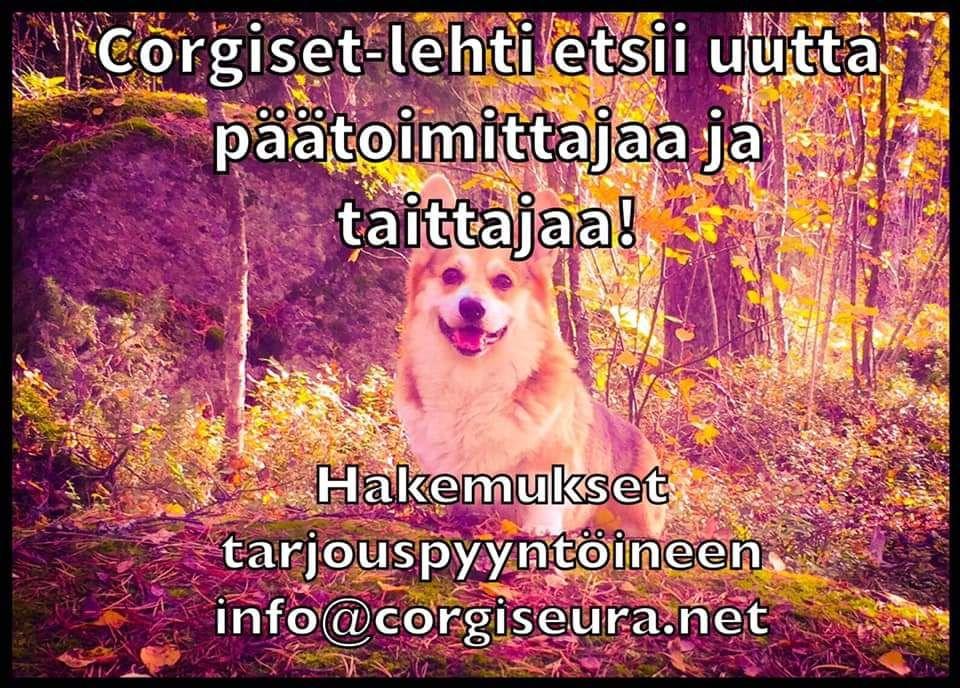 Corgiset_toimittajan ja taittajan haku_2019